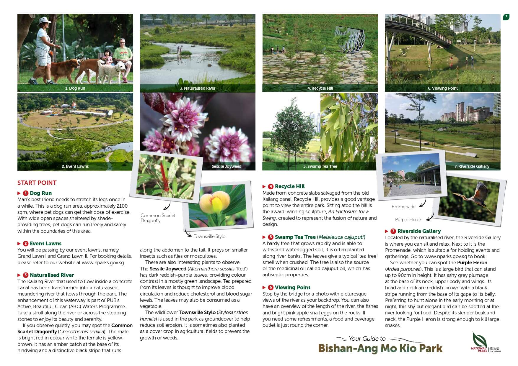 bishan amk park page 3